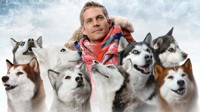 Antartica, descente gagnante sur les pistes du Box-office US
