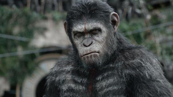 La Planète des singes : Trois courts-métrages pour se préparer à l'affrontement