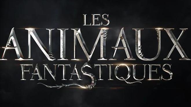 Les Animaux Fantastiques : première photo d'Eddie Redmayne !
