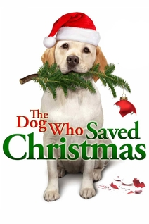 Le sauveur de Noël