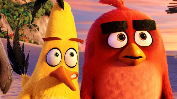 Box-Office US : Angry Birds plus fort que Captain America