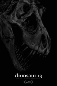 Sue, dinosaure n°13