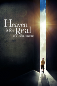 Et si le ciel existait ?