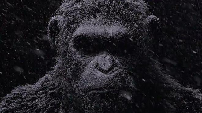 War for the Planet of the Apes : un premier teaser très sombre