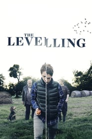 The Levelling
