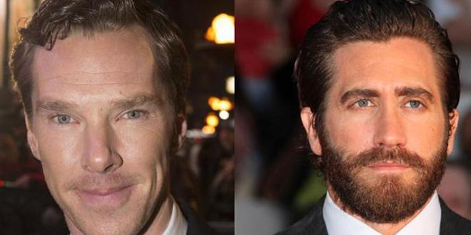 Jake Gyllenhaal et Benedict Cumberbatch en discussion pour un projet commun