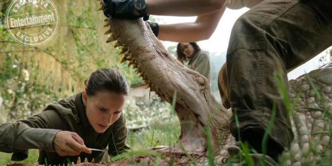 Annihilation : un sublime trailer avec Natalie Portman