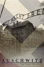 Auschwitz, les Nazis et la 'Solution Finale'