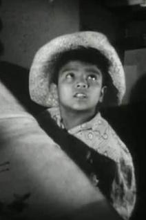 Fernando Alvarado