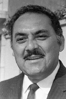 Víctor Alcocer