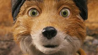 Fantastic Mr. Fox et le retour à la nature de Wes Anderson