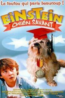 Einstein chien savant