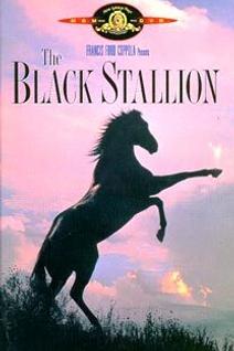 L'Étalon noir