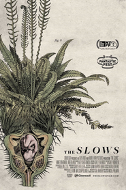 The Slows
