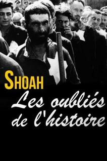 Shoah, les oubliés de l'histoire