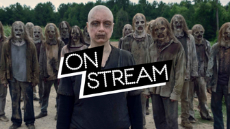On Stream The Walking Dead S9 : les origines d'Alpha dans l'ép10