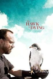 Dressé pour vivre - The Hawk Is Dying