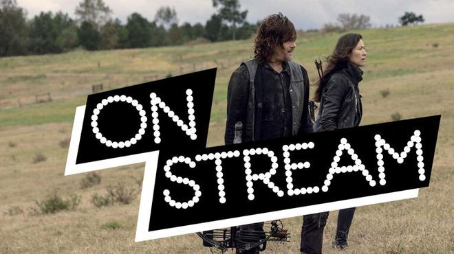 On Stream The Walking Dead S9 - un épisode 15 choquant !