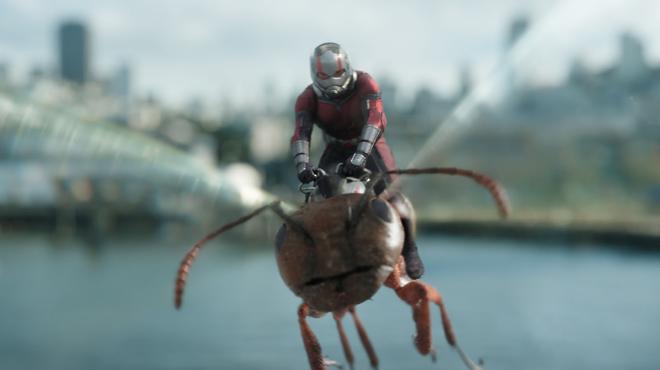 Avengers Endgame : découvrez les fourmis géantes de Ant-Man