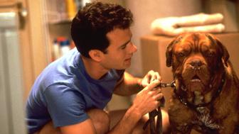 Turner & Hooch: le film avec Tom Hanks adapté en série sur Disney+