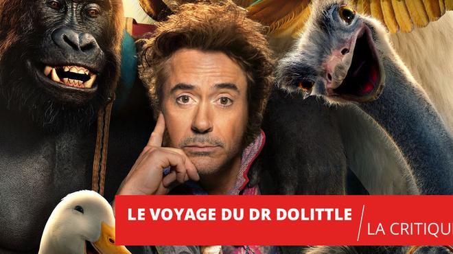Le Voyage du Dr Dolittle : quand Iron Man parle aux animaux