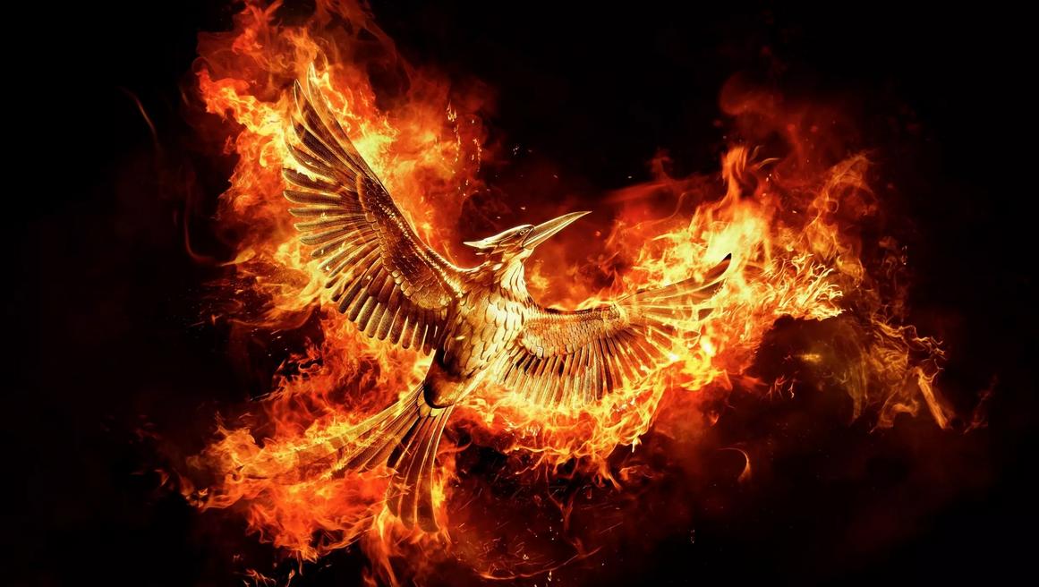Un nouveau film Hunger Games va voir le jour — Préparez-vous