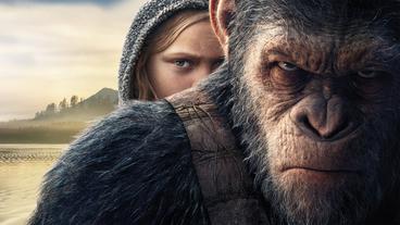 La Planète des singes : Wes Ball donne des précisions sur le nouveau film