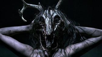The Wretched : c'est quoi ce film d'horreur qui cartonne aux USA en plein confinement ?