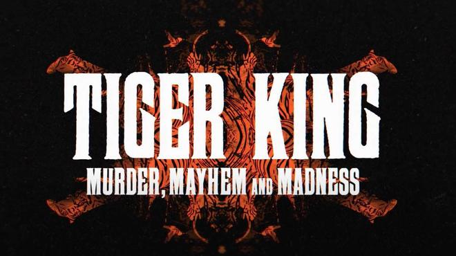 Tiger King : des fans pensent que Nicolas Cage n'est pas le meilleur choix