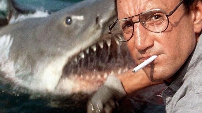 Les Dents de la mer est sur Netflix : découvrez cinq anecdotes de tournage mordantes