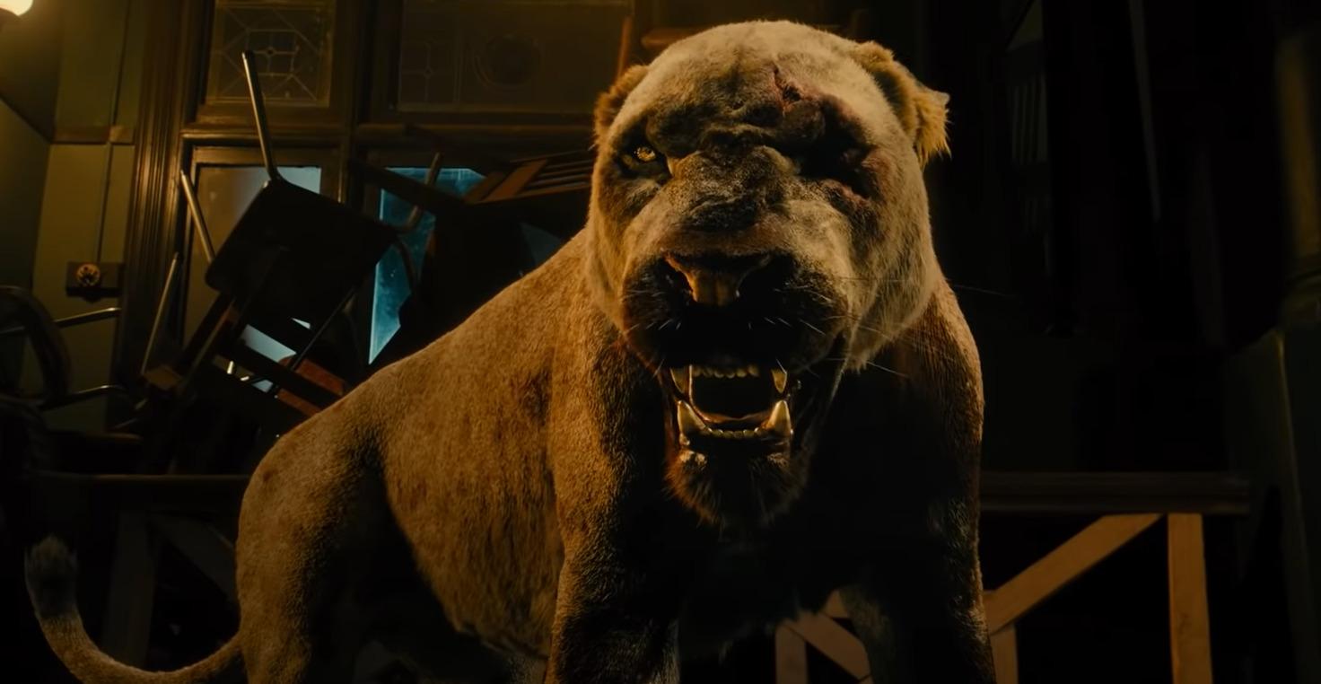 Rogue : Megan Fox face à une lionne dans la bande-annonce