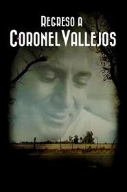 Regreso a Coronel Vallejos