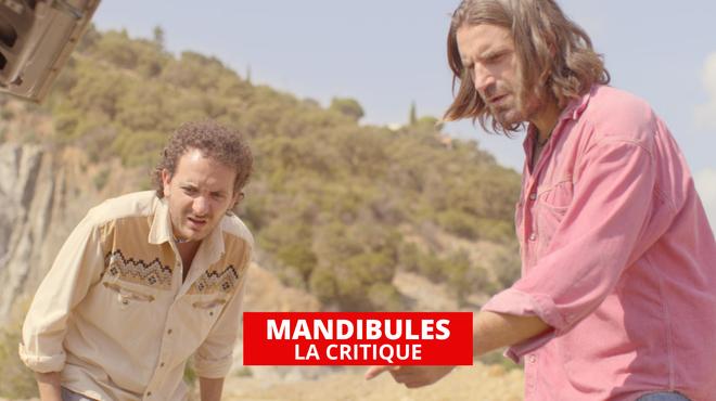 Mandibules : l'art de la bêtise par Quentin Dupieux et le Palmashow