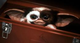 Gremlins : Gizmo est de retour dans la première image de la série préquel