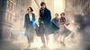Les Animaux fantastiques sur TF1 : une grande première pour J.K. Rowling au cinéma