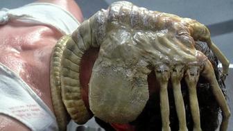 Alien sur Prime Video : cette scène culte a vraiment terrorisé les acteurs