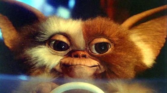 Gremlins 3 : Chris Columbus lâche des infos sur l'éventuelle suite