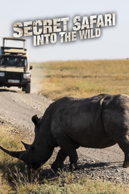 Secret Safari: Into the Wild