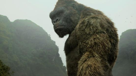 Netflix annonce des séries animées sur Kong et Lara Croft !