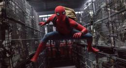 Spider-Man : Tom Holland a cru qu'il allait se faire virer du MCU