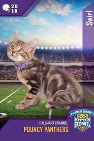 Kitten Bowl VIII Special