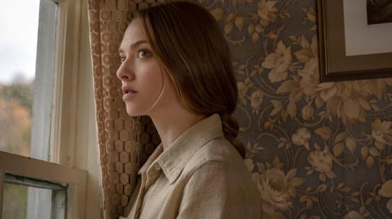 Dans les angles morts sur Netflix : c'est quoi ce thriller fantastique avec Amanda Seyfried ?