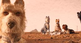 L'Île aux chiens sur Disney + : retour sur la fabrication méticuleuse de la pépite de Wes Anderson
