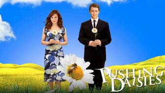 Pushing Daisies : trois choses que vous ne saviez pas sur la série