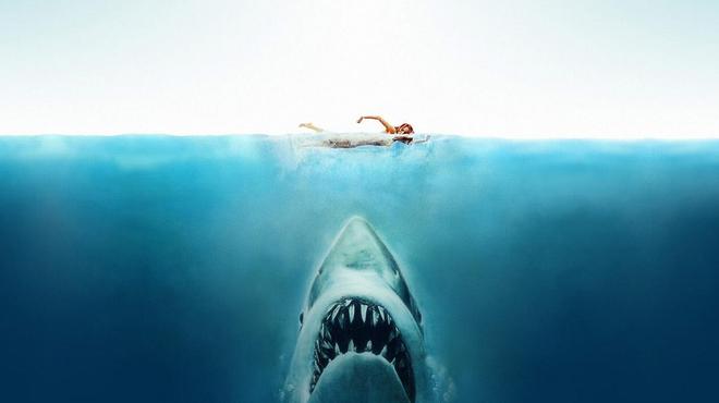 L'année du requin : le premier film de requin français avec Kad Merad et Marina Foïs