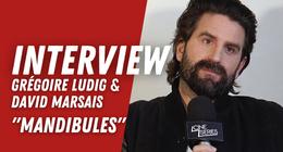 Grégoire Ludig et David Marsais (Palmashow) :