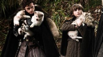 Game of Thrones : cinq choses à savoir sur les loups des Stark