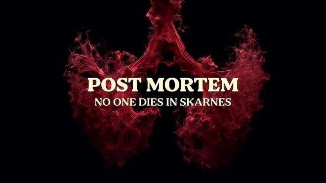 Post Mortem Personne ne meurt à Skarnes : c'est quoi cette série Netflix ?