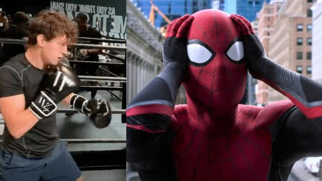 Spider-Man 3 : Tom Holland montre ses talents de boxeur dans une vidéo