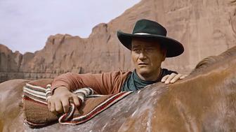 La Prisonnière du désert sur C8 : retour sur l'histoire vraie à l'origine du film